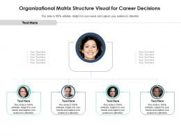 Organizational Matrix Structure Visual For Career Decisions Infographic Template
