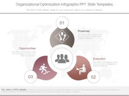 Organizational Optimization Infographic Ppt Slide Templates
