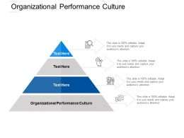 Organizational Performance Culture Ppt Powerpoint Presentation File Graphics Template Cpb