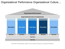 Organizational Performance Organizational Culture Competencies External Environment Business Strategy