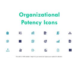 Organizational Potency Icons Planning Ppt Powerpoint Presentation Icon Show