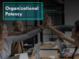 Organizational Potency Powerpoint Presentation Slides