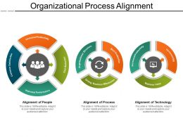 Organizational Process Alignment Example Ppt Presentation