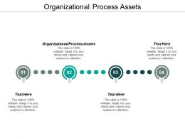 Organizational Process Assets Ppt Powerpoint Presentation Layouts Sample Cpb