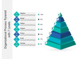 Organizational Process Pyramid With 7 Levels