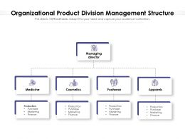 Organizational Product Division Management Structure