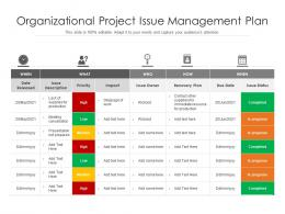 Organizational Project Issue Management Plan