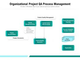 Organizational Project QA Process Management