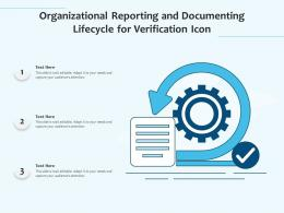 Organizational Reporting And Documenting Lifecycle For Verification Icon