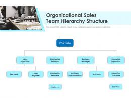 Organizational Sales Team Hierarchy Structure