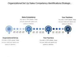 Organizational Set Up Sales Competency Identifications Strategic Potential Gaps