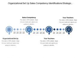Organizational Set Up Sales Competency Identifications Strategic Potential Gaps
