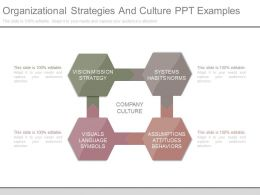 Organizational Strategies And Culture Ppt Examples