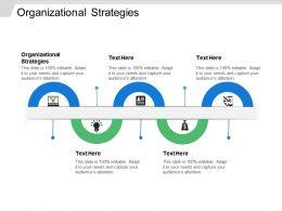 Organizational Strategies Ppt Powerpoint Presentation Ideas Template Cpb