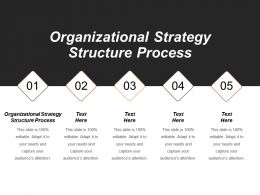 Organizational Strategy Structure Process Ppt Powerpoint Presentation File Ideas Cpb