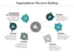 Organizational Structure Building Ppt Powerpoint Presentation Slides Design Ideas Cpb