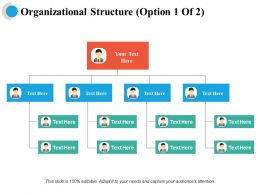 Organizational Structure Business Ppt Powerpoint Presentation File Backgrounds
