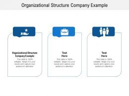 Organizational Structure Company Example Ppt Powerpoint Presentation Layouts Master Slide Cpb