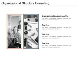 Organizational Structure Consulting Ppt Powerpoint Presentation Gallery Background Images Cpb