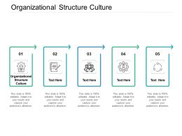 Organizational Structure Culture Ppt Powerpoint Presentation Model Background Image Cpb