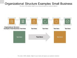 Organizational Structure Examples Small Business Ppt Powerpoint Presentation Infographic Cpb