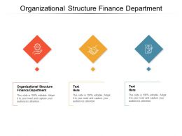 Organizational Structure Finance Department Ppt Powerpoint Presentation Portfolio Elements Cpb