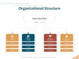 Organizational Structure Investment Ppt Powerpoint Presentation Example File