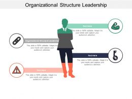 Organizational Structure Leadership Ppt Powerpoint Presentation File Templates Cpb