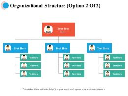Organizational Structure Management Ppt Powerpoint Presentation File Deck