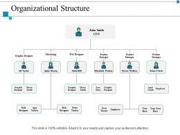 Organizational Structure Marketing Ppt Layouts Example Introduction