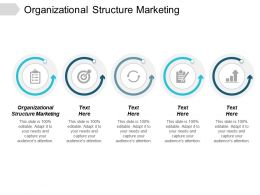 Organizational Structure Marketing Ppt Powerpoint Presentation Slides Background Images Cpb