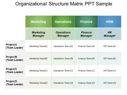Organizational Structure Matrix Ppt Sample