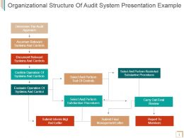 Organizational Structure Of Audit System Presentation Example