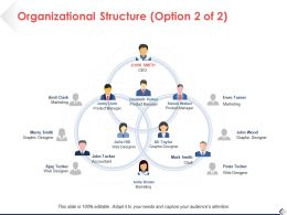 Organizational Structure Option Ppt Pictures Design Ideas