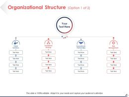 Organizational Structure Option Risk Management Ppt Pictures Design Ideas