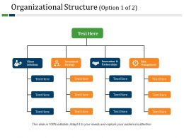Organizational Structure Powerpoint Slide Design Templates