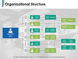 Organizational Structure Ppt Infographics Example Introduction