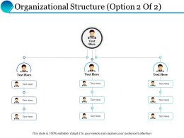 Organizational Structure Ppt Powerpoint Presentation Inspiration Graphics Design