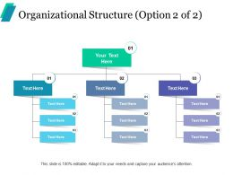 Organizational Structure Ppt Professional Background Images