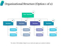 Organizational Structure Ppt Professional Infographic Template