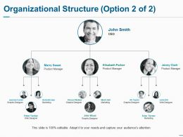 Organizational Structure Ppt Summary Background Images