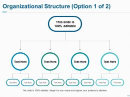 Organizational Structure Ppt Summary Infographic Template