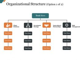 Organizational Structure Presentation Examples