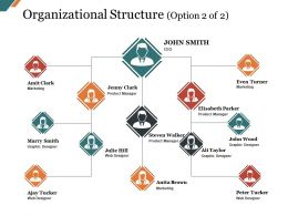 Organizational Structure Presentation Graphics