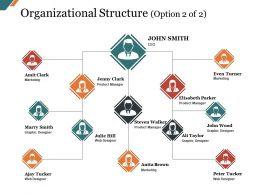Organizational Structure Presentation Graphics