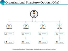 Organizational Structure Process Ppt Powerpoint Presentation Inspiration Graphics Example