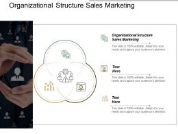 Organizational Structure Sales Marketing Ppt Powerpoint Presentation Inspiration Cpb