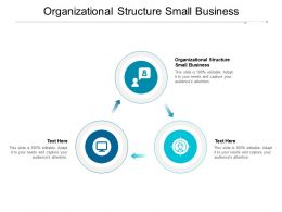 Organizational Structure Small Business Ppt Powerpoint Presentation Show Clipart Cpb