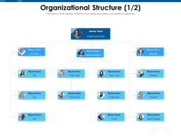Organizational Structure Technical Director Ppt Powerpoint Presentation Infographic Template Show