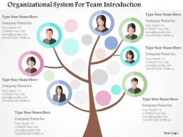 Organizational System For Team Introduction Flat Powerpoint Design